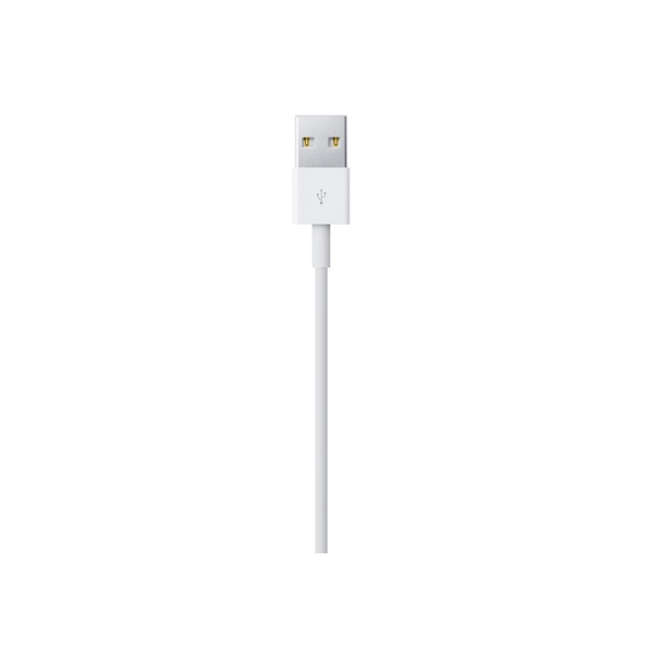MXLY2ZA/A:LIGHTNING TO USB CABLE (1 M)-ITS